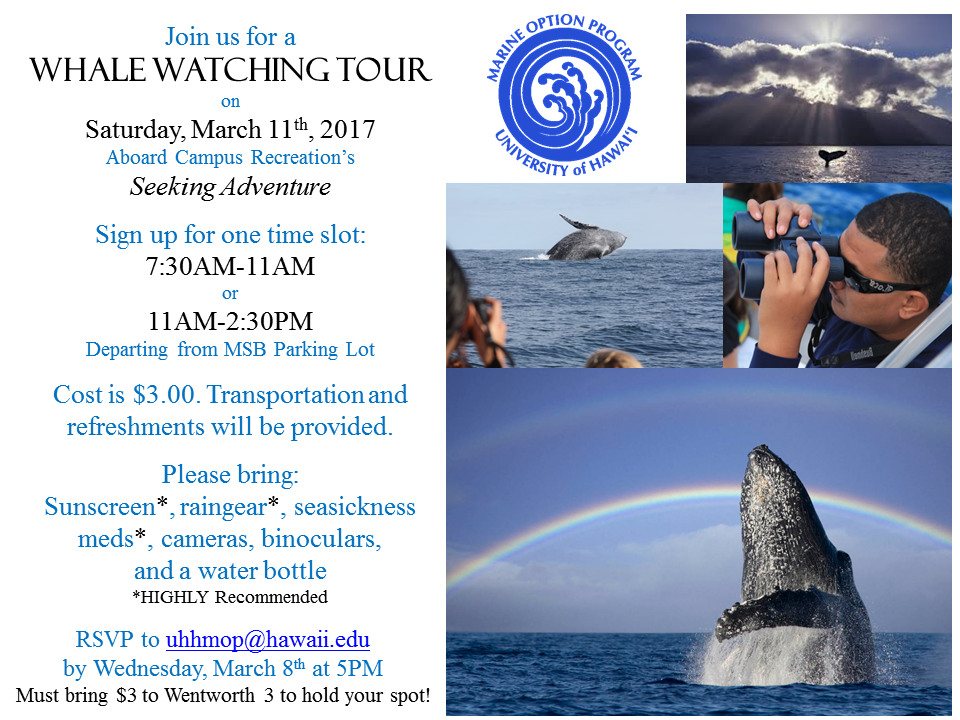 whale watch flyer